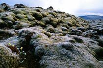 Volcanic Bed von Dan Dorland