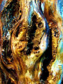 Natur und Kunst 2 von konni