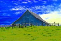 The Bluest Barn by Ellen Bollinger