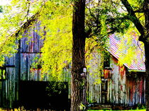 Barn in the Trees  by Ellen Bollinger