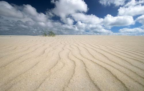 Amrum-sand