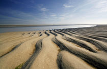 Sandstrand St.Peter-Ording by Peter Rohde