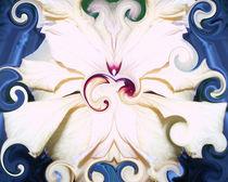 Hibiscus Wirbelbild weiß von Tatjana Wicke