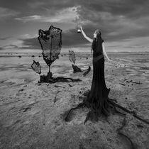 Carrying Light by Dariusz Klimczak