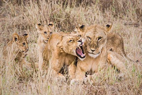 Kenya-20050409-img-2668