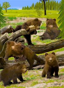 Bärenkinder  von Heidi Schmitt-Lermann