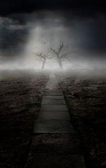 The Dark Land von Jarek Blaminsky