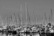 Yachthafen von leddermann