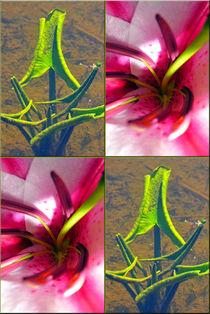 """Viererbild """"pinkgrün"""" von lisa-glueck"""