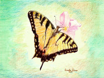 Monarch on green background by Linda Ginn