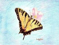 Monarch on blue background von Linda Ginn