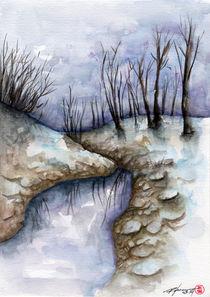 Landscape by Rodrigo Chaem