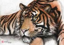 tiger by Rodrigo Chaem