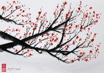 Sakura by Rodrigo Chaem