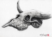 Skull Bull by Rodrigo Chaem