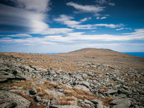 Cairn Trail on Mount Washington by Jim DeLillo