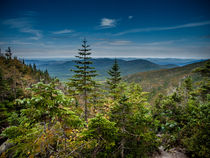 Looking West from Mount Washington von Jim DeLillo