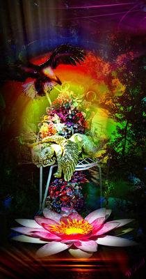 Geheimnisvoll 12 schöne Träume von Walter Zettl