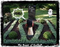 The Power of Football von Daniel Sean Kaiser