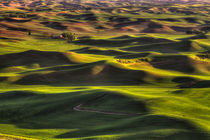 Spring on the Palouse by Mark Kiver