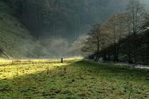 Sunbeams and Mist, Wolfscote Dale von Rod Johnson