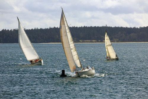 Sailboats-racing0482