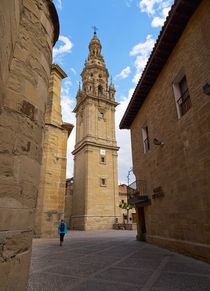 Detached tower of the cathedral of Santo Domingo de la Calzada by Louise Heusinkveld