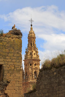 Storks nest on the walls in Sto Domingo de la Calzada, Spain von Louise Heusinkveld