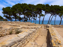 Ruins of the Greek City of Empuries, Catalonia, Spain von Louise Heusinkveld