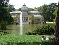 Palacio de Cristal, Parque del Retiro, Madrid von Sabine Radtke