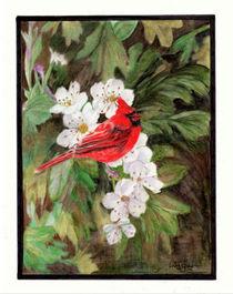 Red Bird on Hawthorn Flowers von Linda Ginn