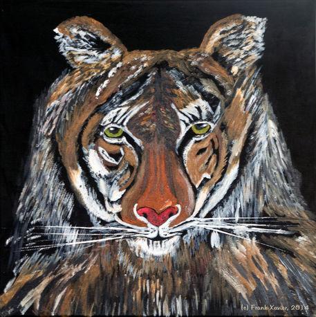 Tiger-roy