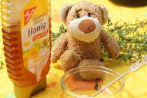 Bär im Honigparadies by Olga Sander