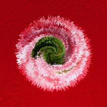 Flower globe abstract von Robert Gipson