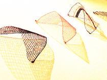 lace#3 by Katia Terpigoreva