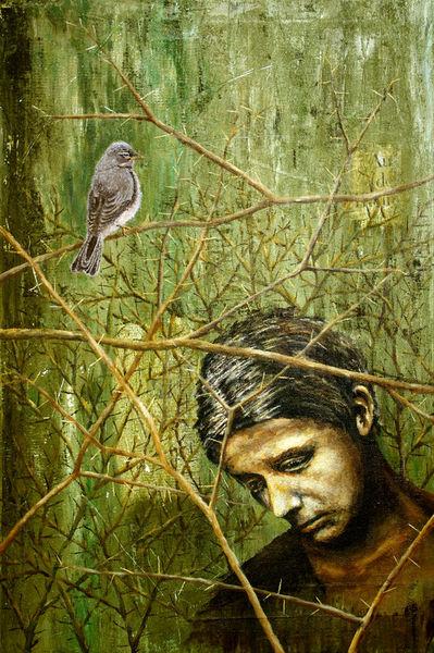 Thomasbley-dornenvogel