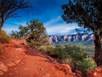 Trail on Arizona Red Rocks von Jim DeLillo