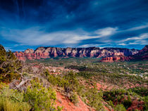 Arizona Vista by Jim DeLillo