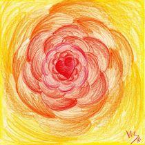 AA_Sonnengeflecht von Tina Boehm