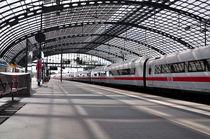 Berliner Hauptbahnhof von captainsilva