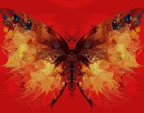 fiery butterfly by Natalia Rudzina