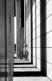 Im Gitternetz  von Bastian  Kienitz
