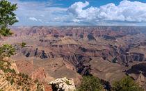 The Rugged Terrain Of The Grand Canyon von John Bailey