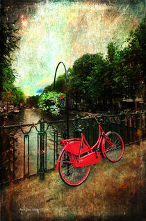The Red Bicycle von Randi Grace Nilsberg