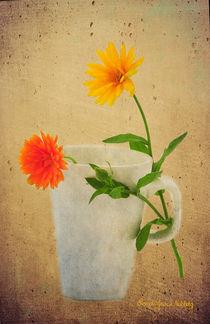 Flirt by Randi Grace Nilsberg