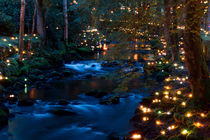 Magical river at night by Mark Dworatzek