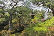 Beautiful Japanese Garden von Mark Dworatzek