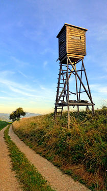 Jagdstand am Wegesrand | Architekturfotografie by Patrick Jobst