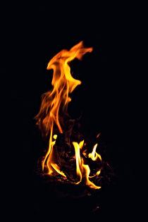 Bright fire burning in the dark von Igor Korionov
