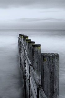 Groynes at Blyth Sands von David Pringle